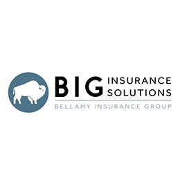 BIG Insurance Solutions - Nationwide Insurance Website Image